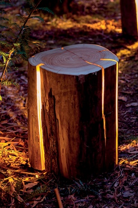 Duncan Meerding's log lights.