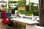 The global impact of biophilic design in the workplace