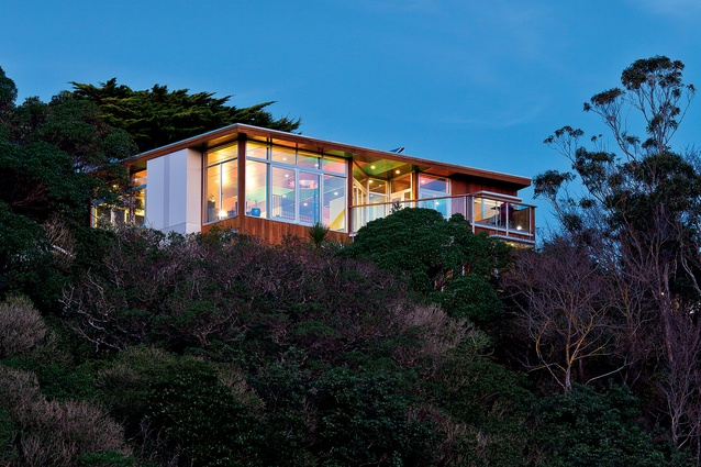 Tui House is discreetly and tightly nestled within bush and surrounding homes.