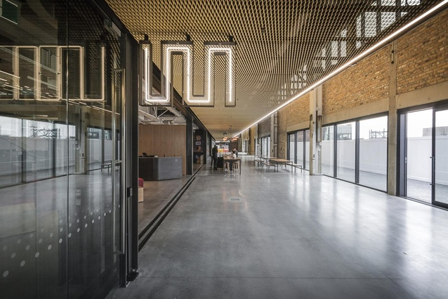 Finalist: Workplace over 1,000m<sup>2</sup> – Warren and Mahoney Auckland Studio by Warren and Mahoney Architects.