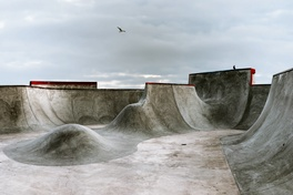 Concrete dogtown