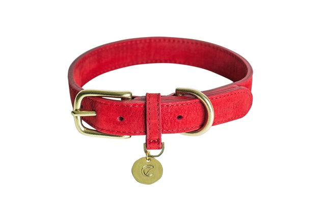 Nubuck Collar in Cherry Red from Cloud 7 