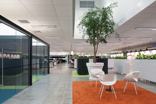 The project area incorporates strong colours and furniture choices, concrete floor.