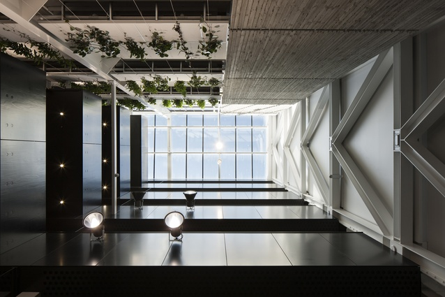 Interior Architecture category winner: 141 Cambridge Terrace/Lane Neave, Christchurch by Jasmax.