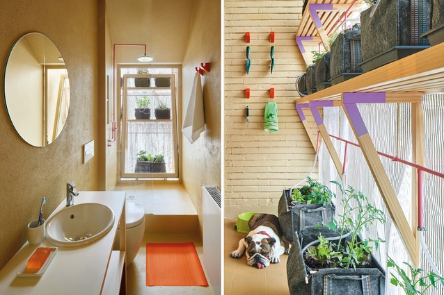 A watering system makes use of grey water from the apartment's shower. It is filtered and used to irrigate a small vegetable garden.