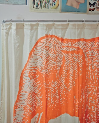 "Elephant shower curtain: ""This was purchased from Kleins Perfumery, a great little shop on Brunswick Street. It gave the bathroom much-need life and it makes me very happy""."
